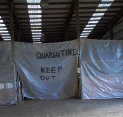 [Image: quarantin1c.jpg]
